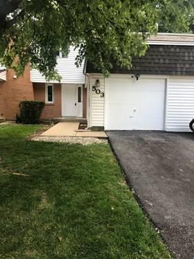 503 Dubois, Bolingbrook, IL 60440