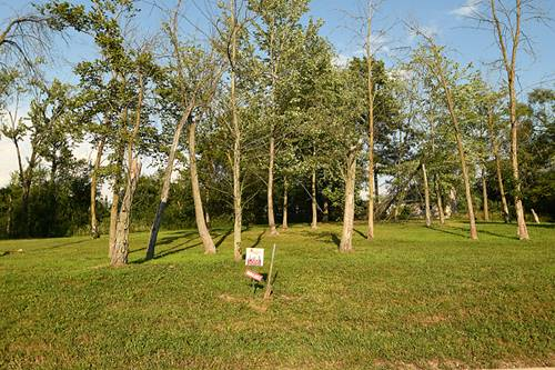 12905 S Arbor, Palos Park, IL 60464