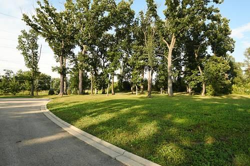 12906 S Arbor, Palos Park, IL 60464