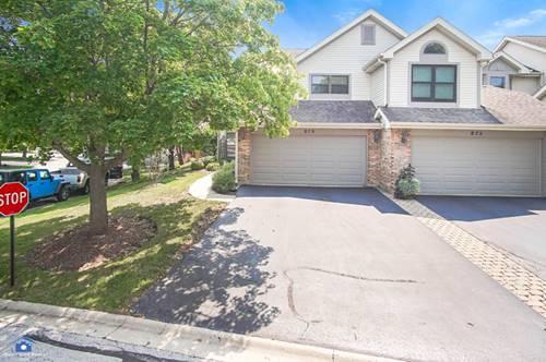 879 N Auburn Woods, Palatine, IL 60067