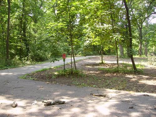 Os810 Autumn Woods, Elburn, IL 60119