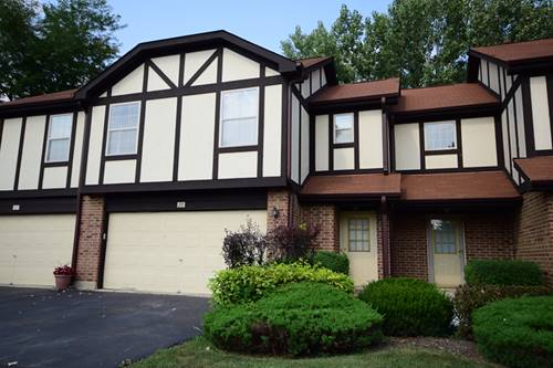 28 Willowbridge Unit 28, Bloomingdale, IL 60108