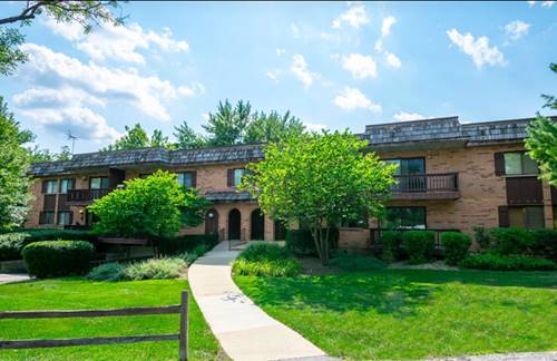 8100 Woodglen Unit 208, Downers Grove, IL 60516