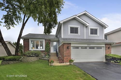 1607 Terri, Naperville, IL 60563