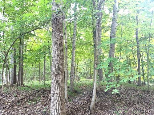 Lot 221 Elm Tree, Varna, IL 61375