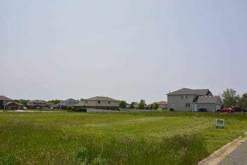 4978 W Hawk, Monee, IL 60449