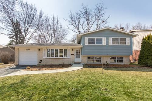 407 W Braeside, Arlington Heights, IL 60004