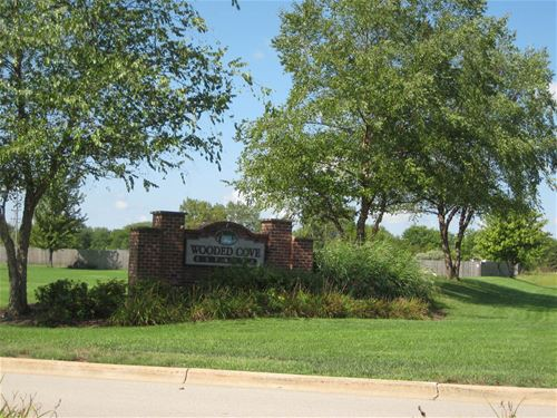 21253 S Wooded Cove, Elwood, IL 60421