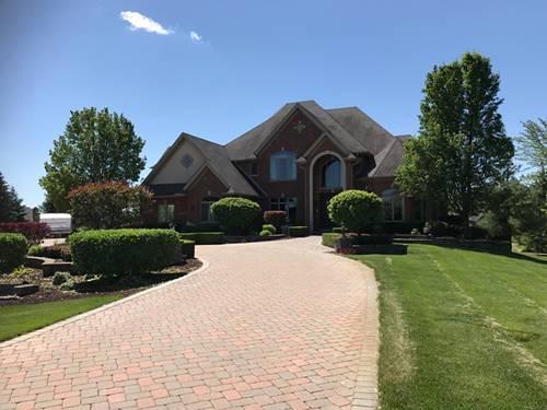 15403 W Wheatstone, Homer Glen, IL 60491