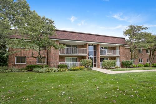 1110 Mercury Unit 2A, Schaumburg, IL 60193