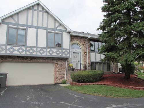 9361 Windsor Unit 157, Tinley Park, IL 60487