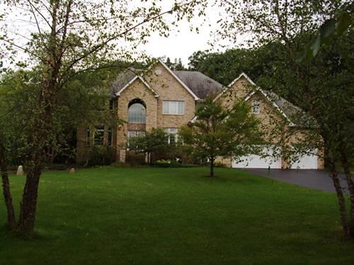 16432 S Pine Hill, Homer Glen, IL 60491
