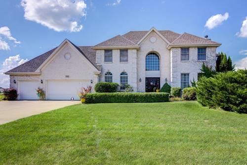 17417 S Honora, Plainfield, IL 60586
