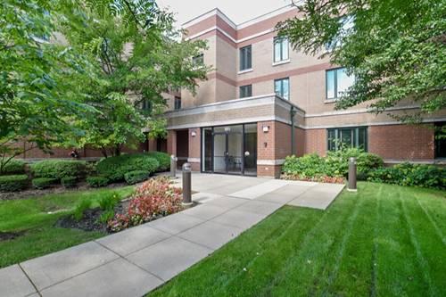 891 Central Unit 233, Highland Park, IL 60035