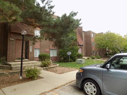 730 Court Of Birch Unit 4, Vernon Hills, IL 60061