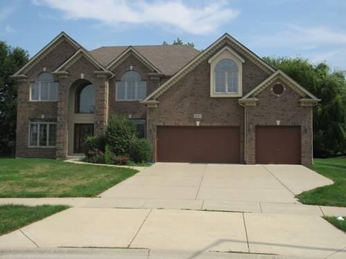 487 Danbury, Oswego, IL 60543