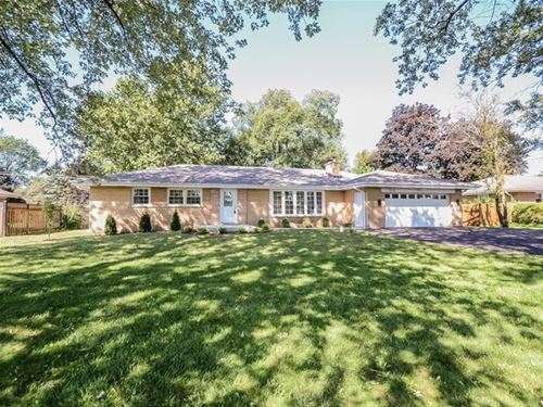 916 N Elmhurst, Prospect Heights, IL 60070