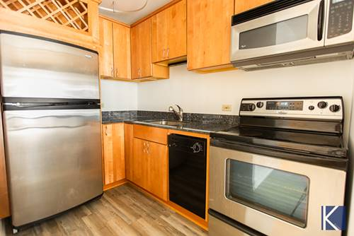 1749 N Wells Unit 322, Chicago, IL 60614 Lincoln Park