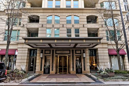 25 E Superior Unit 4201, Chicago, IL 60611 River North