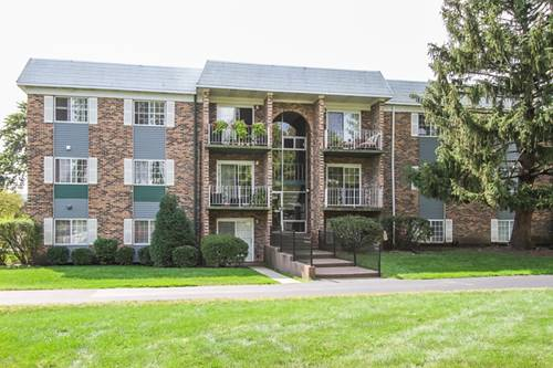 1609 N Windsor Unit 204, Arlington Heights, IL 60004