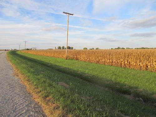 Route 1 Sec 9 Twp 32 R14e, Grant Park, IL 60940