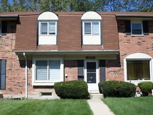 1043 Lioncrest, Richton Park, IL 60471