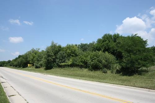 Lot 1 Mcdonough, Joliet, IL 60431