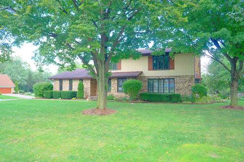 3632 Parthenon, Olympia Fields, IL 60461
