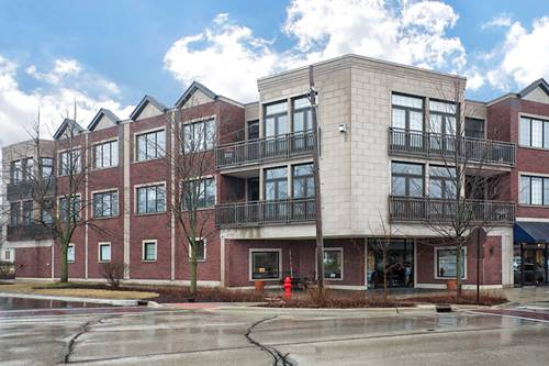 578 Roger Williams Unit 204, Highland Park, IL 60035