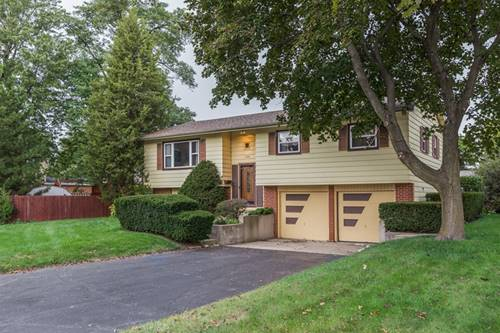 1104 E Barberry, Mount Prospect, IL 60056