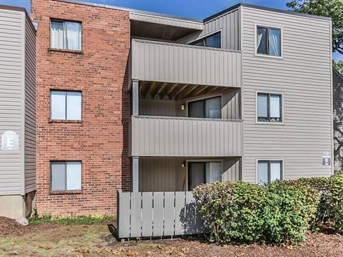 1830 W Highland Unit D106, Elgin, IL 60123