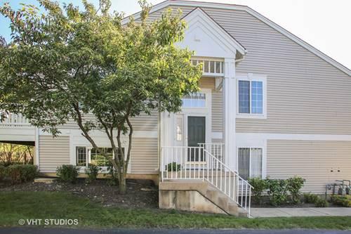 910 Mayfair Unit 1, Elk Grove Village, IL 60007