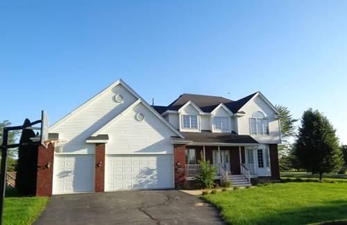 4860 W Roberts Ridge, Monee, IL 60449