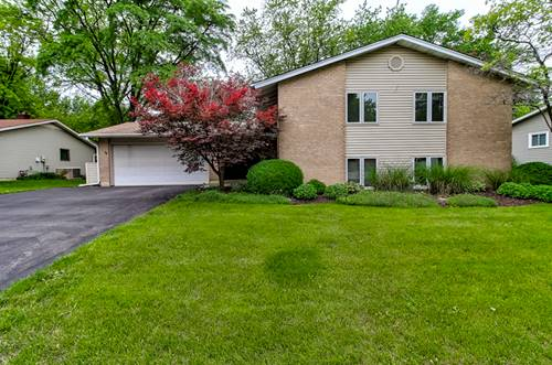 6532 Mitchell, Woodridge, IL 60517