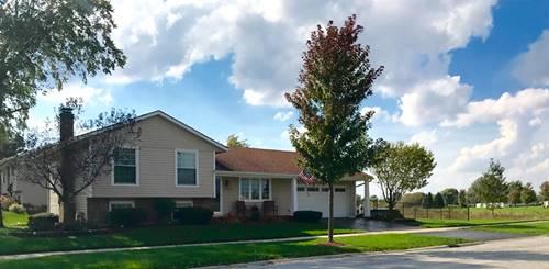 7656 W Riverton, Frankfort, IL 60423