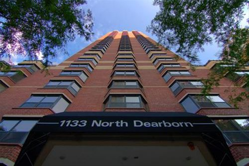 1133 N Dearborn Unit 1307, Chicago, IL 60610 Gold Coast