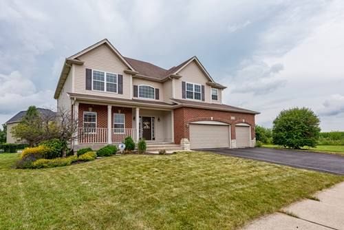 25139 Fieldbrook, Plainfield, IL 60544