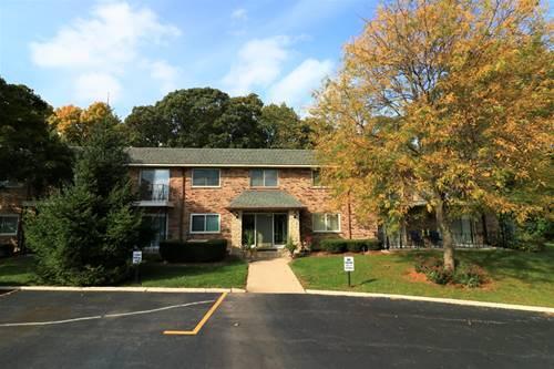 191 Hillcrest Unit 2A, Bloomingdale, IL 60108