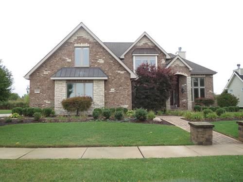 25319 W Alison, Plainfield, IL 60586