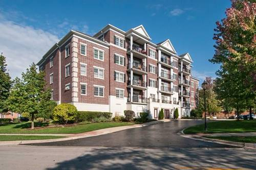 446 Mcdaniels Unit 304, Clarendon Hills, IL 60514