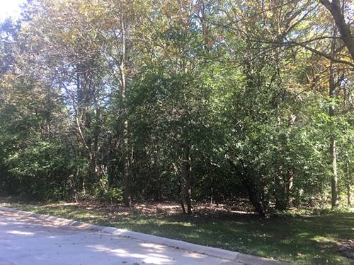 Lot 11 Mount Vernon, Lake Forest, IL 60045