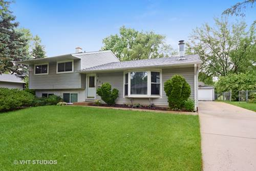 664 White Pine, Buffalo Grove, IL 60089