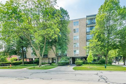 424 Park Unit 206, River Forest, IL 60305
