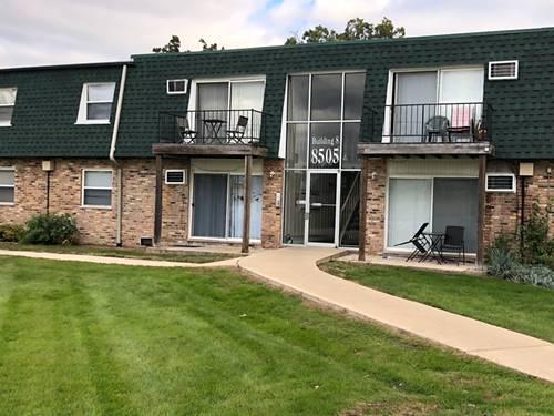 8505 W 101 Unit 301, Palos Hills, IL 60465