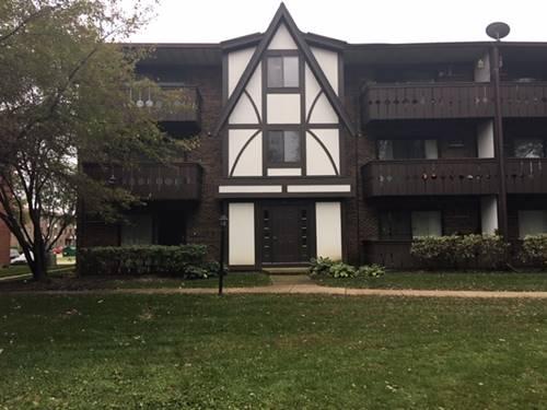 13 Timber Unit 9, Vernon Hills, IL 60061