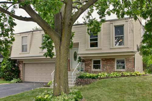 455 Norman, Roselle, IL 60172