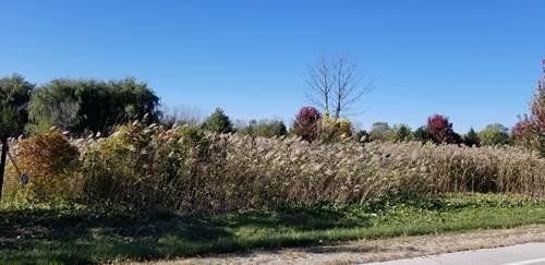 37574 N Il Route 59, Lake Villa, IL 60046