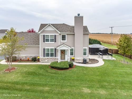 25400 Cove, Plainfield, IL 60544