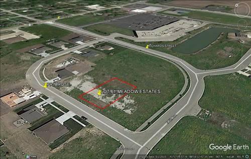 Lot 61 S Primrose, Coal City, IL 60416
