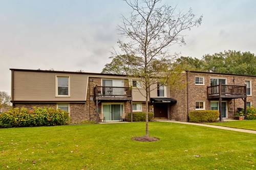 345 N Carter Unit 203, Palatine, IL 60067